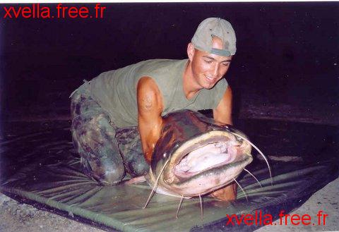 Cathunter Jelle, Wels Catfish
