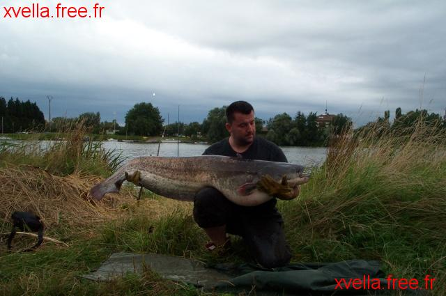 Eric57, Wels Catfish