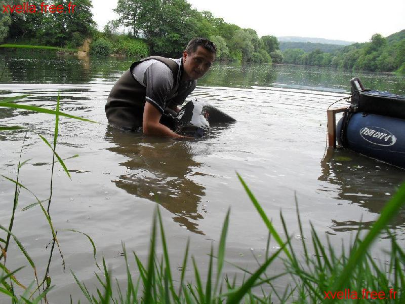 Val T, Wels Catfish