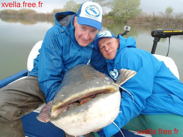 Steeve Et Greg, Wels Catfish